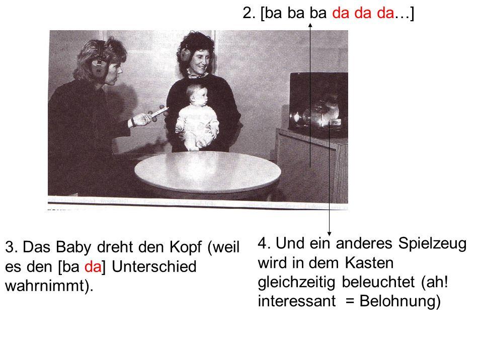 2. [ba ba ba da da da…] 4. Und ein anderes Spielzeug wird in dem Kasten gleichzeitig beleuchtet (ah! interessant = Belohnung)